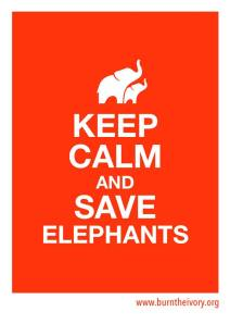 Keep Calm and Save Elephants
