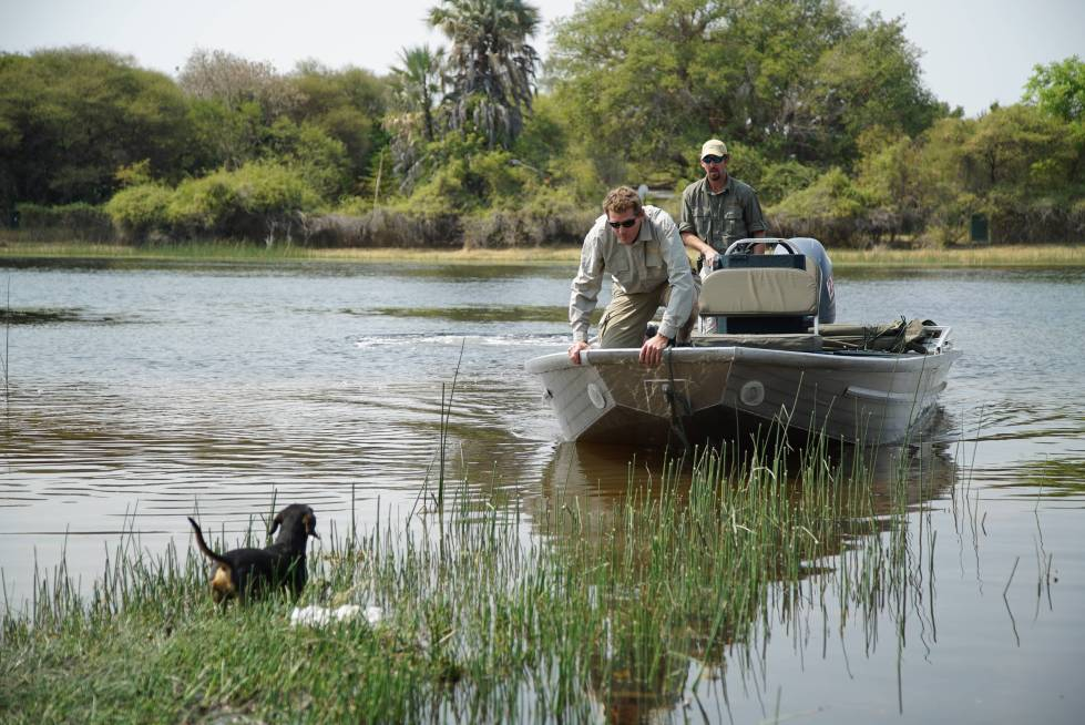 BOTSWANA- Grant and Brent in boat approaching land as dog Gizmo awaits on marsh. (Photo credit: National Geographic Channels/Symbio Studios)